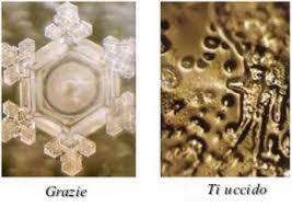 immagini cristalli acqua Emoto