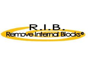 logo rib 2